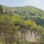 Romania Turism - Statiunea Negulesti