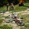 Tare ca Piatra 2012