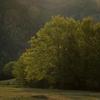 Toamna in Valea Bicajelului 2012