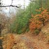 Traseu de Hiking pe Varful Ivanes