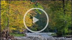 Culori de toamna pe Valea Secului