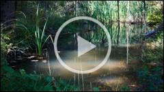 Drumetie in parcurile naturale din judetul Neamt