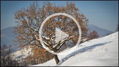 Peisaje de Iarna Peste Vale - Piatra Neamt 2012