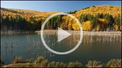 Toamna la Lacul Cuejdel